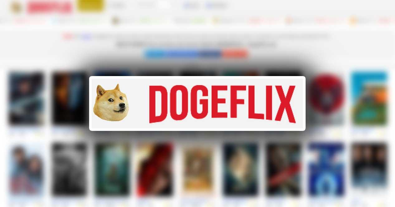 1621367855 Doge and Netflix mix to offer free movies and series
