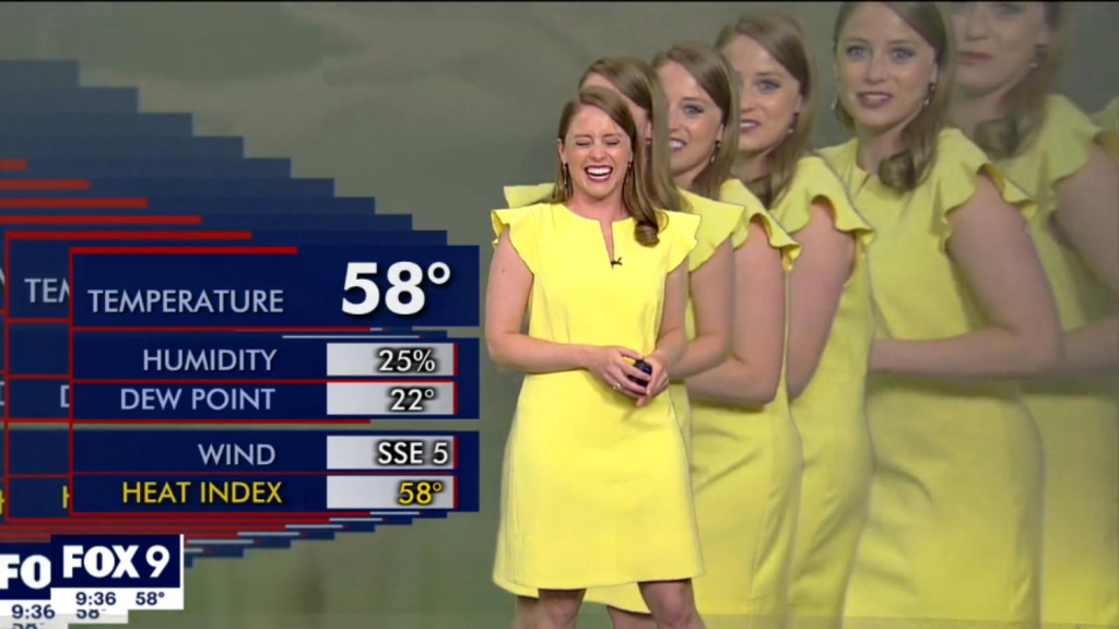 """Meteorologist se """"multiply"""" live while giving report"""