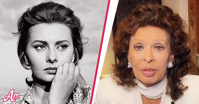 Sophia Loren, unrecognizable: facelift, botox and her other beauty experiences