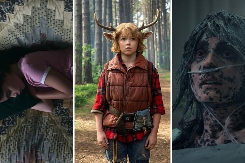Netflix premieres in June 2021: 80 original series, films and documentaries