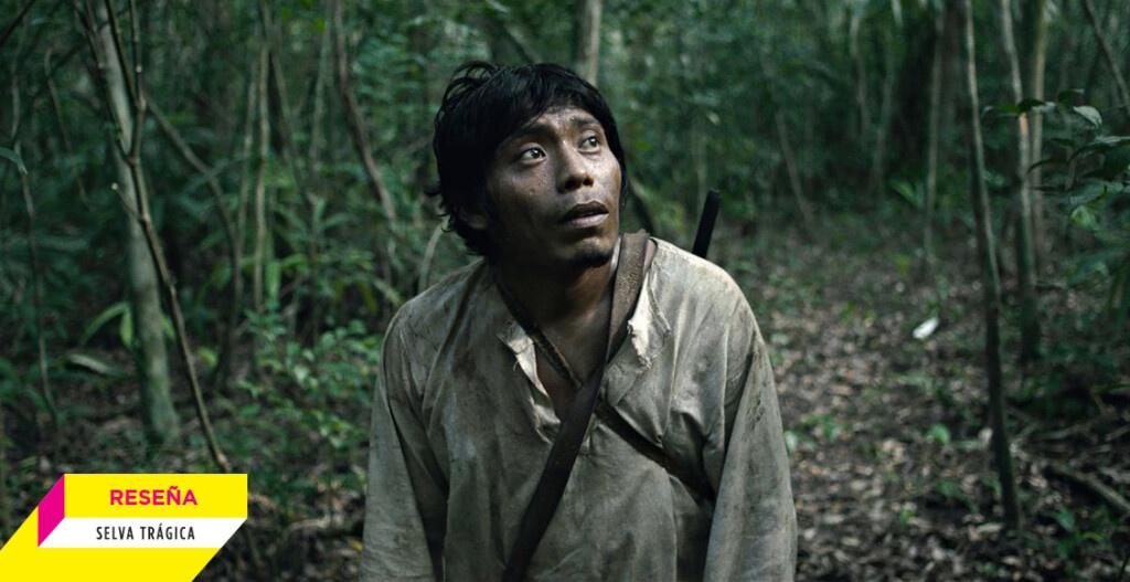 1623452008 Tragic jungle We are finite in the face of the