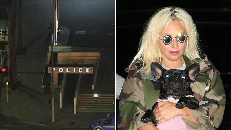 Man charged with shooting Lady Gaga's dog sitter ordered trial