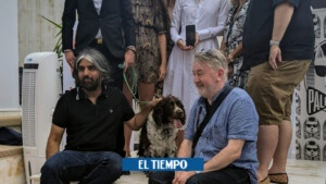 Tilda Swinton's dogs win Cannes Palm for 'performance'