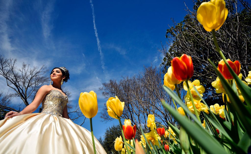 Dallas Arboretum will have quinceanera parade and concerts as part