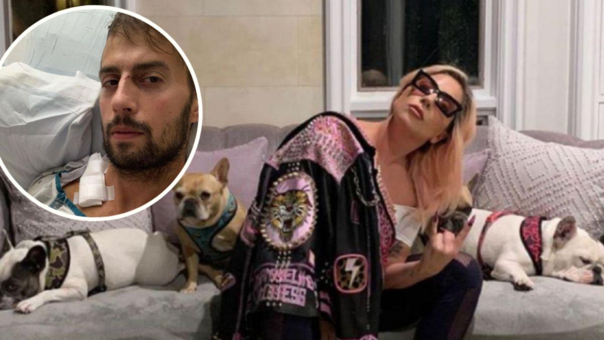 The request of Ryan Fischer Lady Gagas dog walker