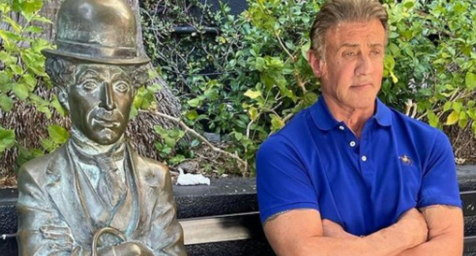 Sylvester Stallone: The Movies He Decided Not To Star