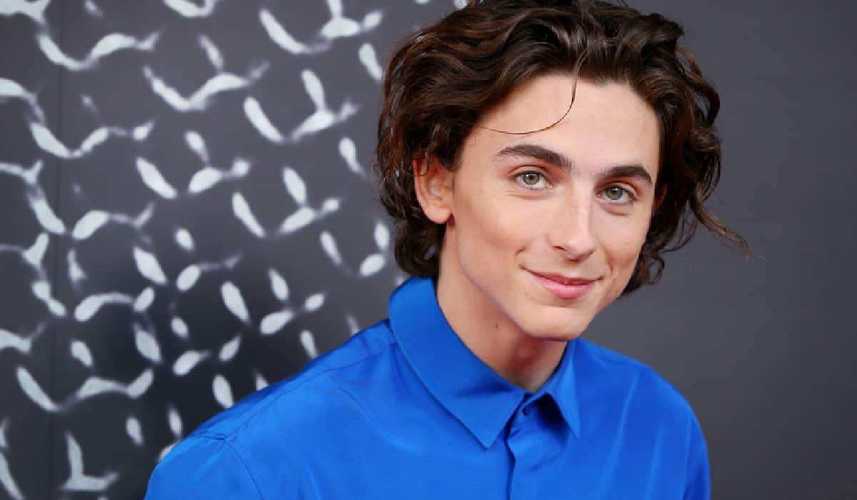 This is what Timothée Chalamet said about Spider-Man: No Way Home
