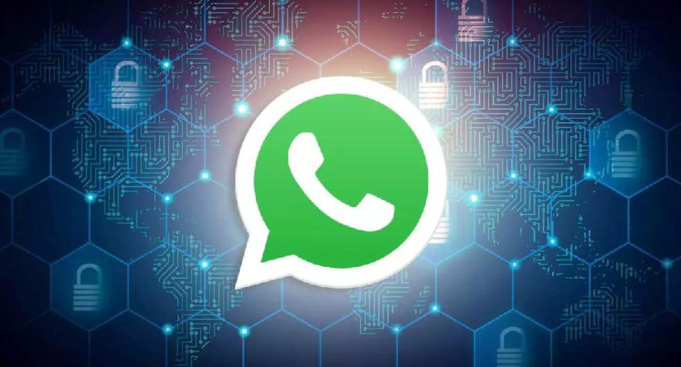WhatsApp how to encrypt the backup copies of your chats