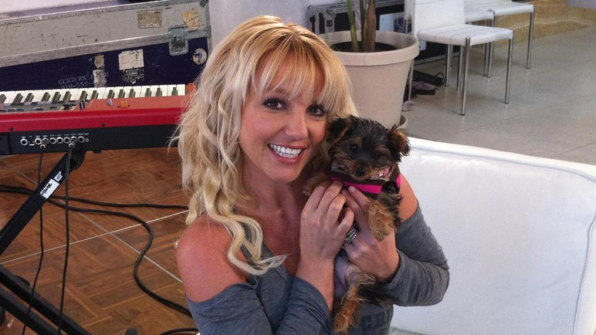 1633740518 Britney Spears will still not give concerts after being freed